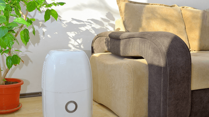 Air Purifier Vs Humidifier For Baby